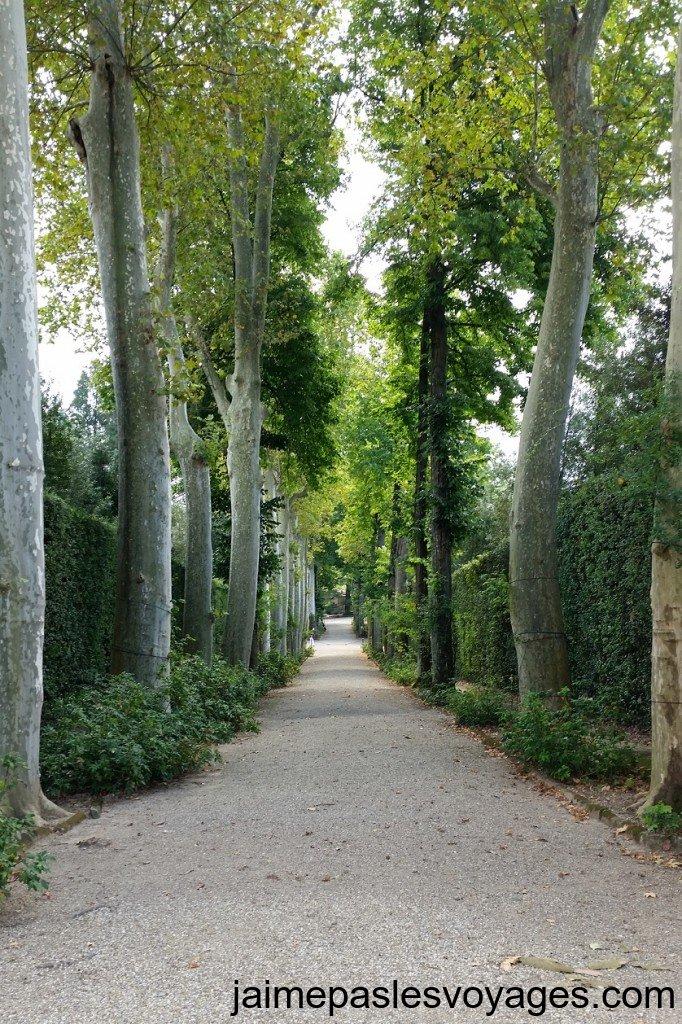 Une allée du jardin de Boboli à Florence